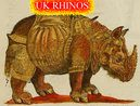 The UK Rhinos